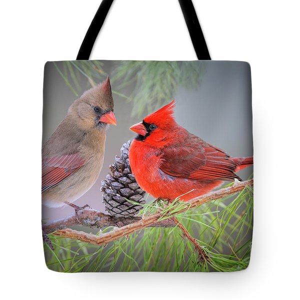 Cardinals In Pine Tote Bag