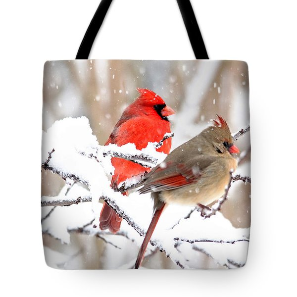 Cardinals In The Winter Tote Bag