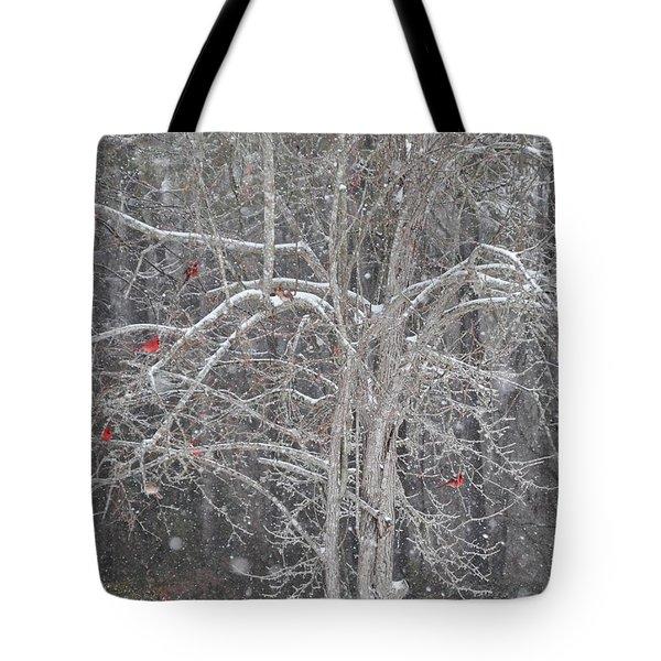 Cardinals In Tree Tote Bag