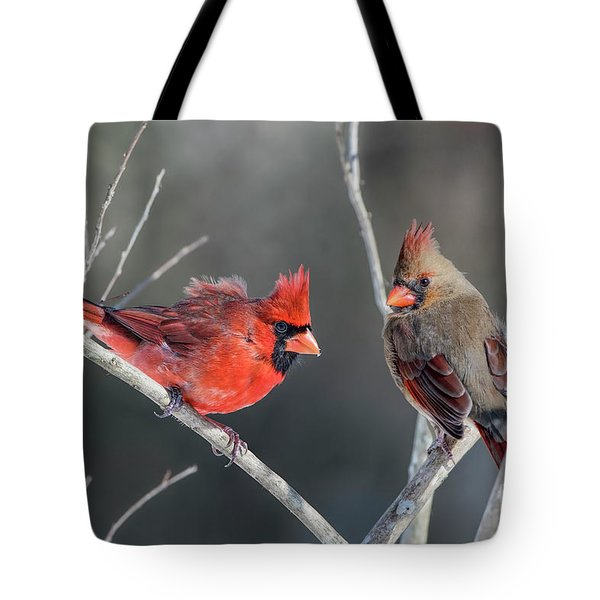 Cardinals On A Gray Day Tote Bag