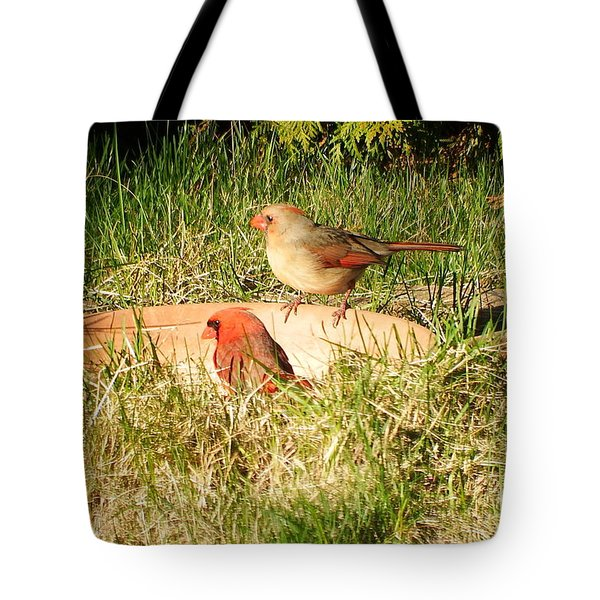 Tote Bag featuring the photograph Cardinals by Vicky Tarcau