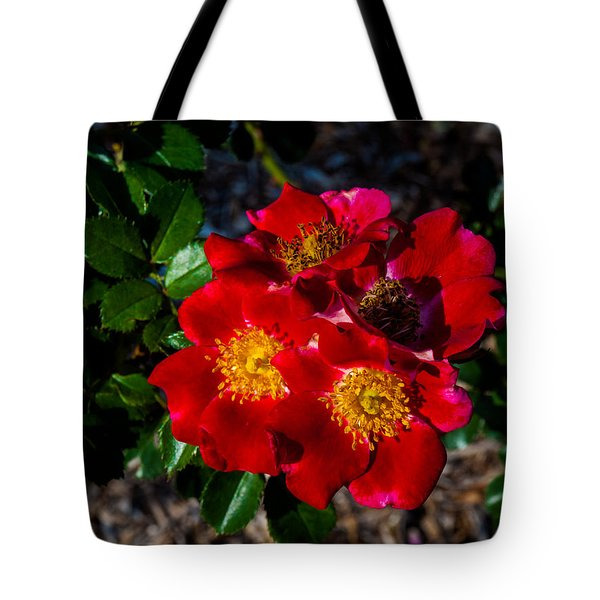 Tote Bag featuring the photograph Carefree Spirit by Randy Sylvia