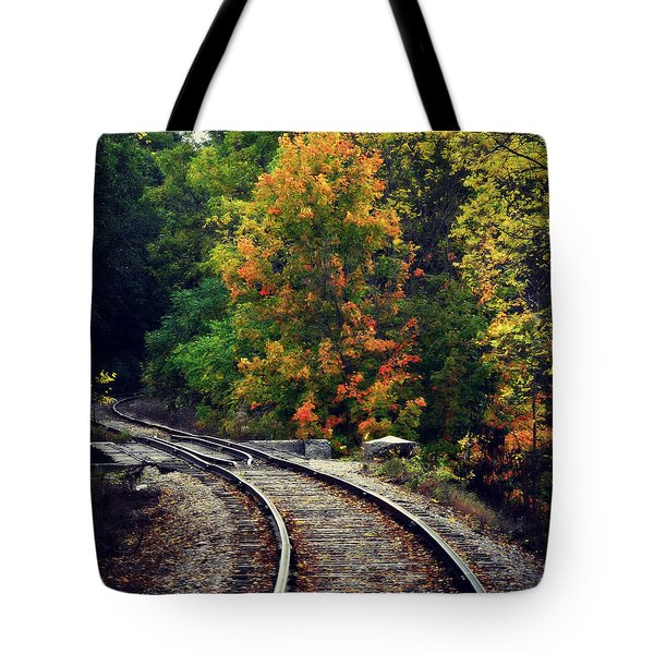 Caressing The Curve Tote Bag