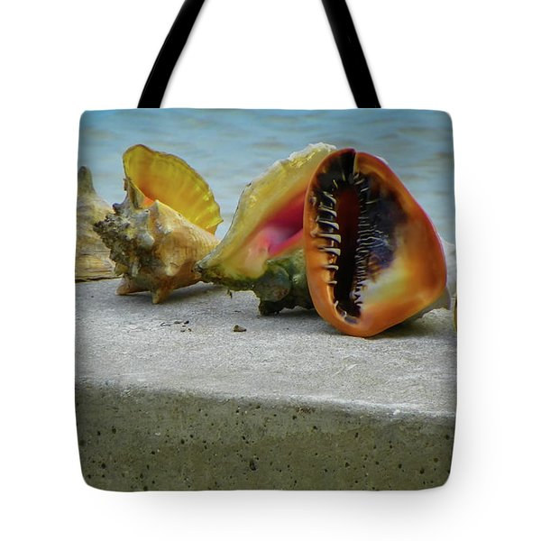Tote Bag featuring the photograph Caribbean Charisma by Karen Wiles