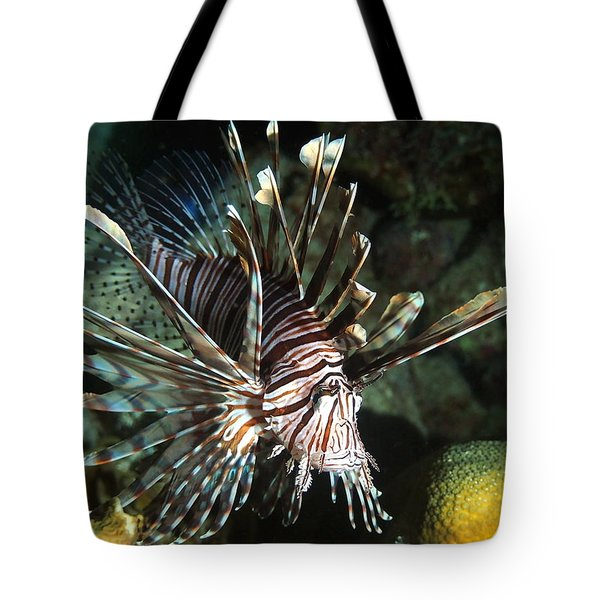 Caribbean Lion Fish Tote Bag