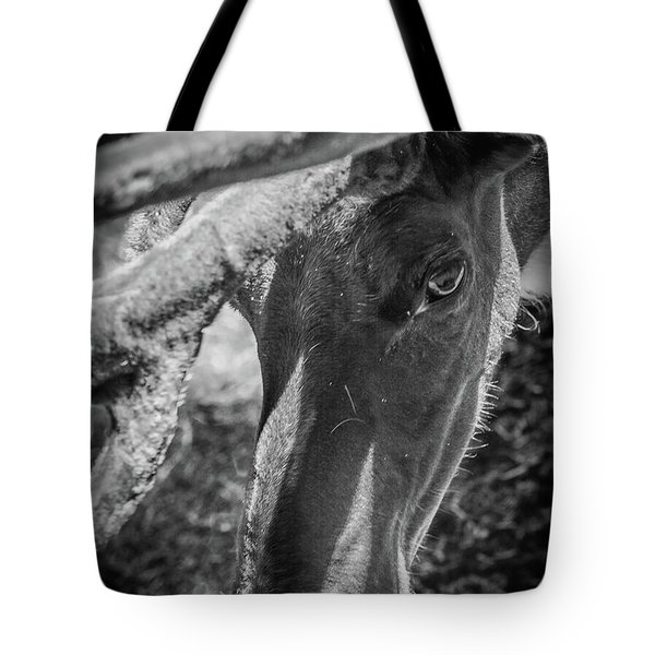 Caribou Black And White Tote Bag