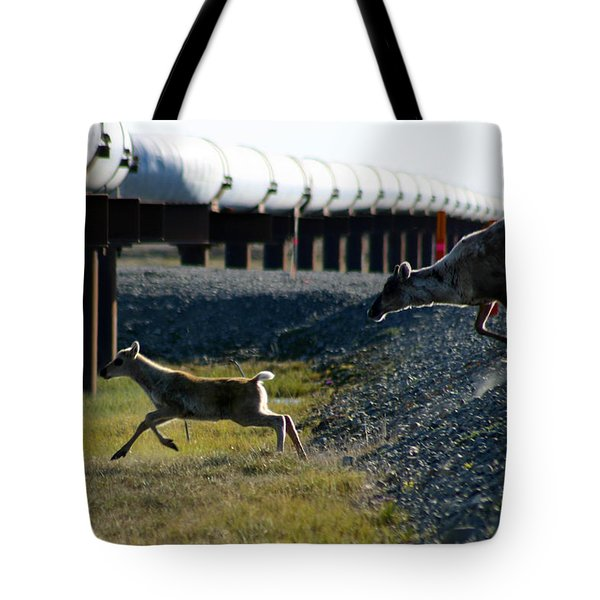 Caribou Cow And Fawn Tote Bag by Anthony Jones