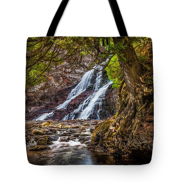 Tote Bag featuring the photograph Caribou Falls In Fall by Rikk Flohr