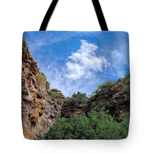 Tote Bag featuring the photograph Carlsbad Caverns by Gina Savage