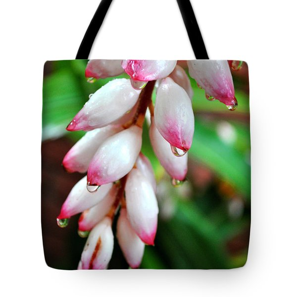 Tote Bag featuring the photograph Carmellas Ginger And Raindrops by Kate Word