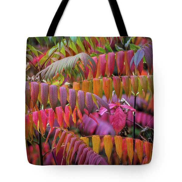 Tote Bag featuring the photograph Carnival Of Autumn Color by Bill Pevlor