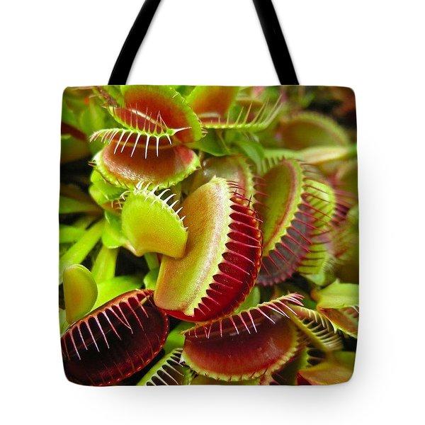 Carnivores Tote Bag