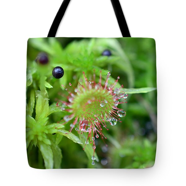 Carnivorous Sundew Tote Bag by Lila Fisher-Wenzel