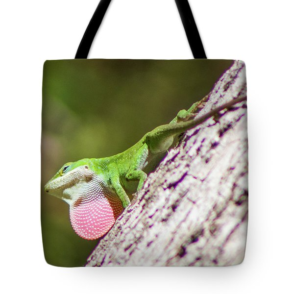 Tote Bag featuring the photograph Carolina Anole by Lynne Jenkins