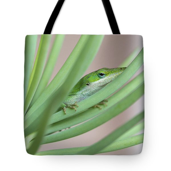 Carolina Anole Tote Bag