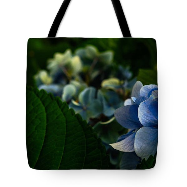Carolina Blues Tote Bag