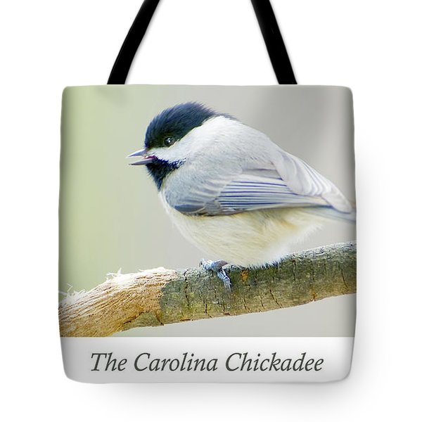 Carolina Chickadee, Animal Portrait Tote Bag