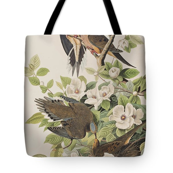 Carolina Turtle Dove Tote Bag by John James Audubon