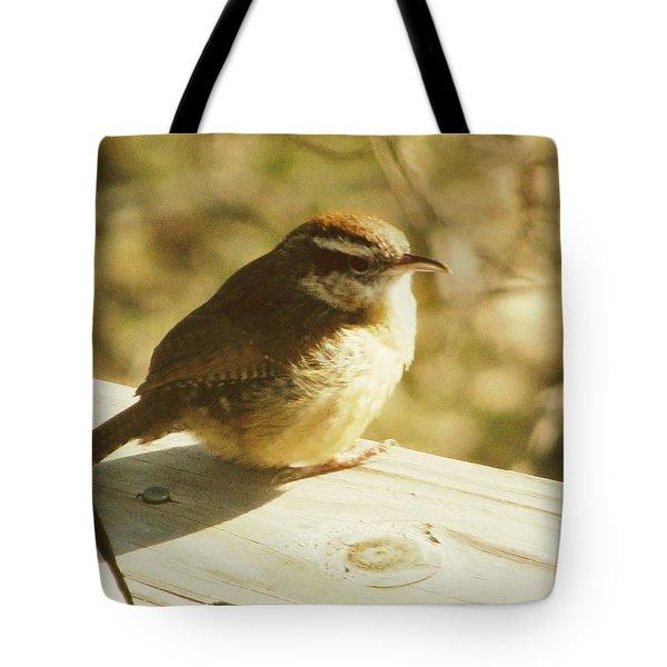 Carolina Wren Tote Bag by Amy Tyler
