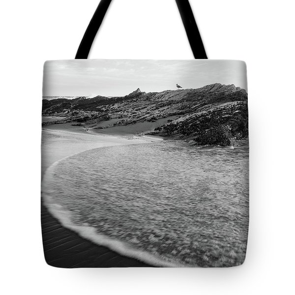 Carpinteria Seagull Tote Bag