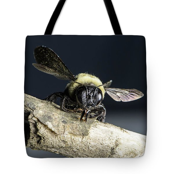 Carpenter Bee Tote Bag