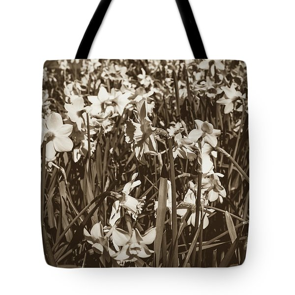 Tote Bag featuring the photograph Carpet Of Daffodils by Jacek Wojnarowski