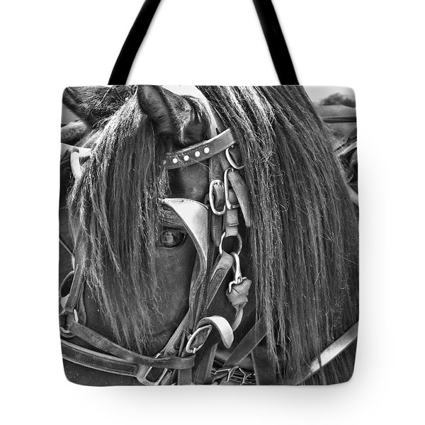 Carriage Horse Ride Tote Bag