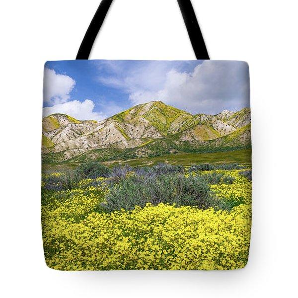 Carrizo Spring Tote Bag