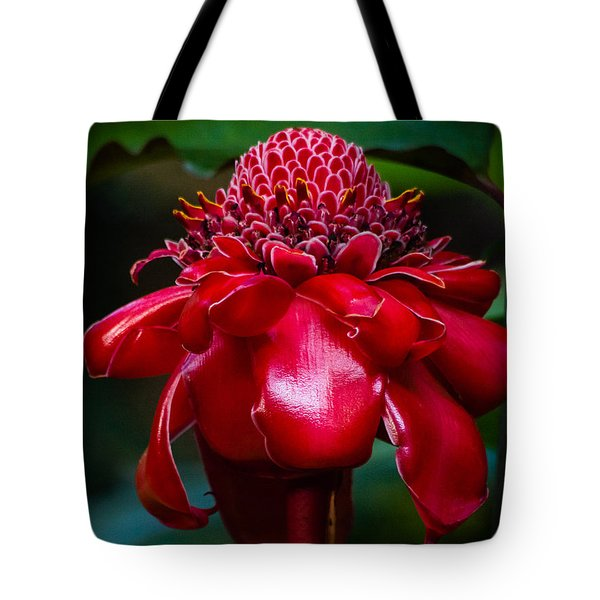 Carrying A Torch Tote Bag