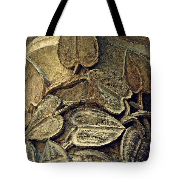 Carved In Stone 1  Tote Bag