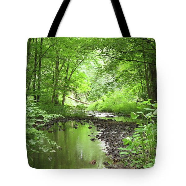 Tote Bag featuring the photograph Carver Creek by Kimberly Mackowski