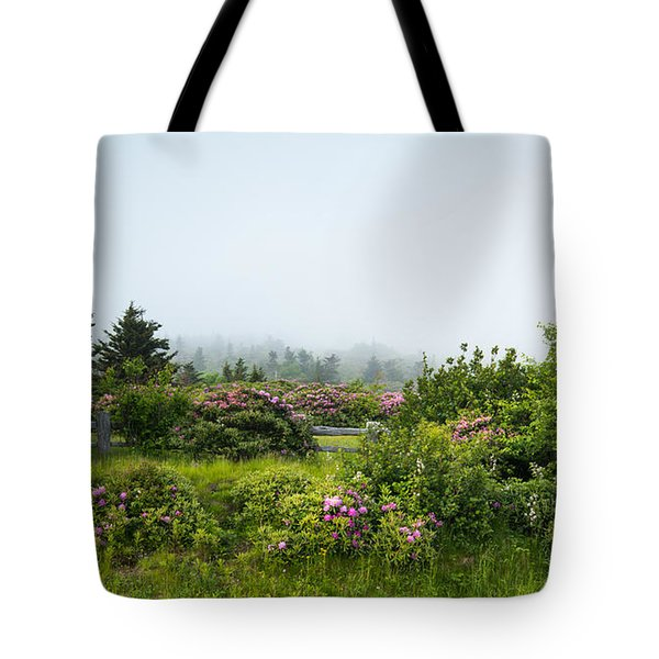 Carvers Gap Pisgah Cherokee National Forest Appalachian Trail Tote Bag