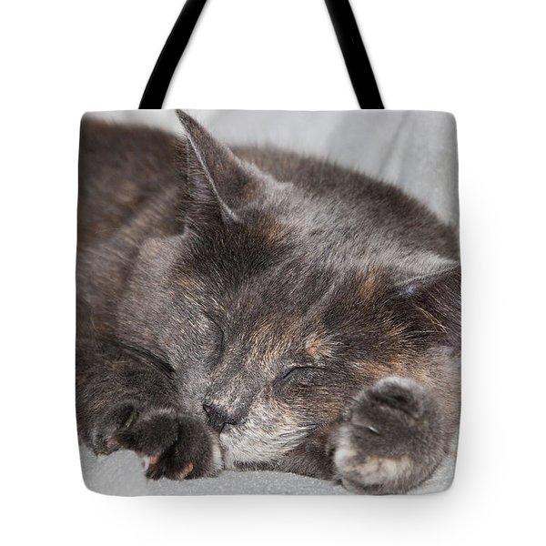 Tote Bag featuring the photograph Cas-4 by Ellen Lentsch