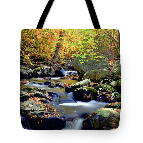Cascade Brook Tote Bag