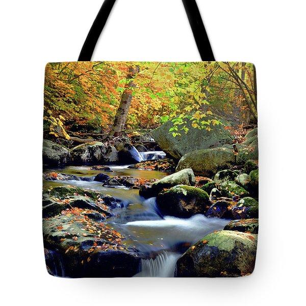 Cascade Brook Tote Bag