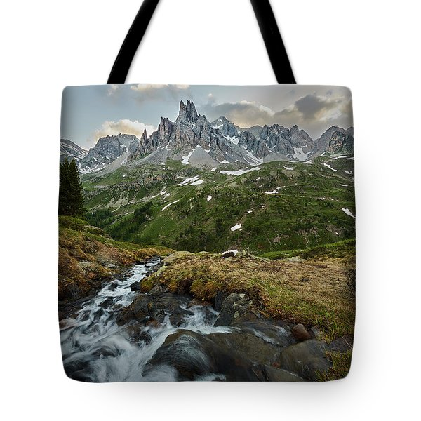 Cascade In The Alps Tote Bag