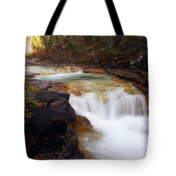 Cascade On Beauty Creek Tote Bag by Larry Ricker