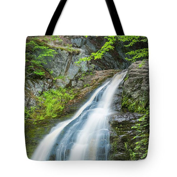 Tote Bag featuring the photograph Cascade Waterfalls In South Maine by Ranjay Mitra