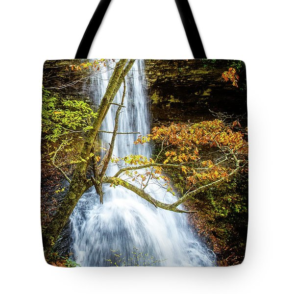 Cascades Deck View Tote Bag