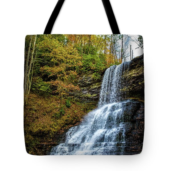 Cascades Lower Falls Tote Bag