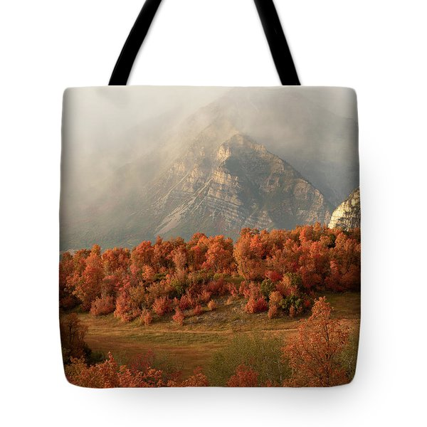 Cascading Fall Tote Bag