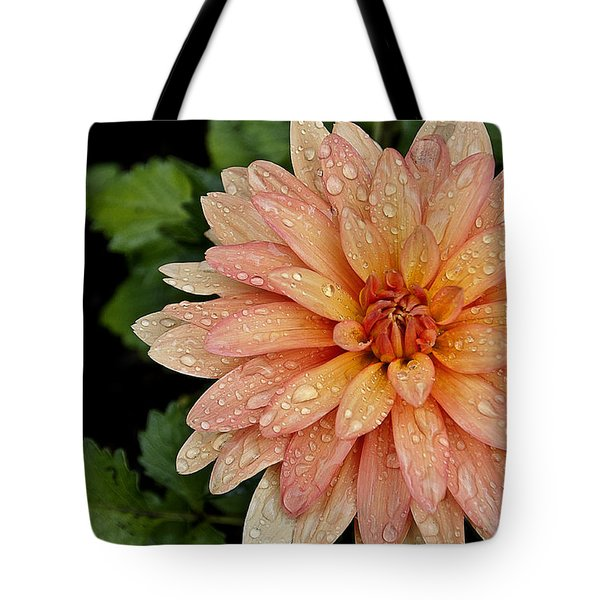 Cascading Rain Droplets Tote Bag by Deborah Klubertanz
