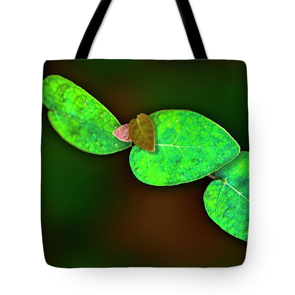 Tote Bag featuring the photograph Cascading Vine by Paul Wear