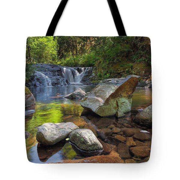 Cascading Waterfall At Sweet Creek Falls Trail Tote Bag by David Gn