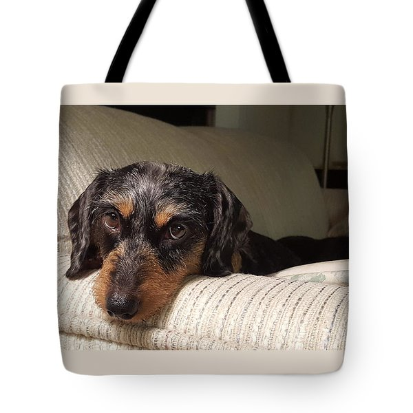 Cassie Tote Bag by Judy Wanamaker
