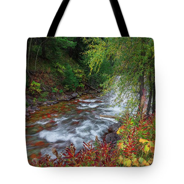 Tote Bag featuring the photograph Castle Creek Beauty by Tim Reaves