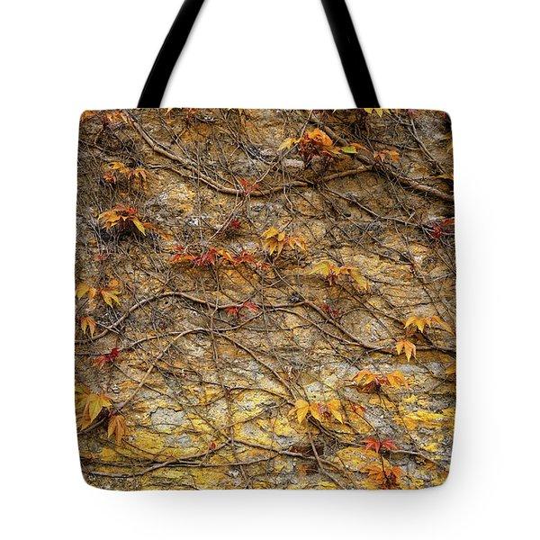 Castle Ivy Tote Bag