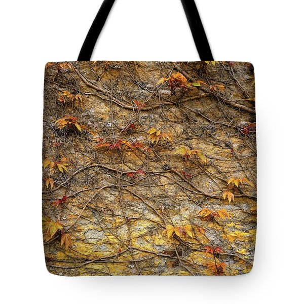 Castle Ivy Tote Bag