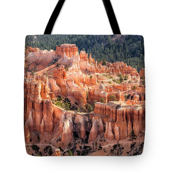 Castle Path Tote Bag