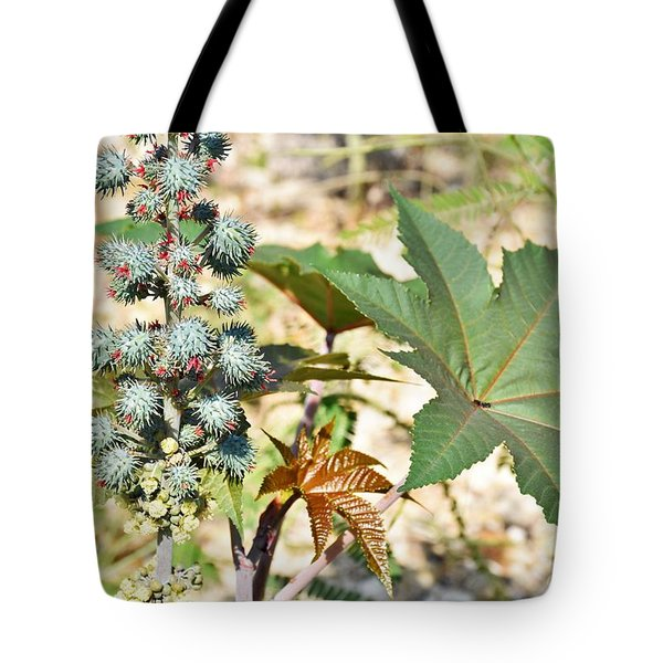 Tote Bag featuring the photograph Castor Oil Plant by Ray Shrewsberry